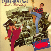 album Rock 'N' Roll Story by Spider Murphy Gang