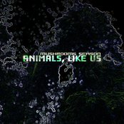 Animals, like us