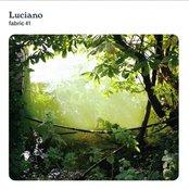 Fabric 41: Luciano