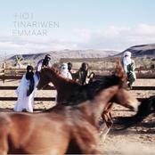 Cover artwork for Timadrit In Sahara