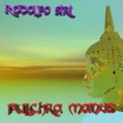 Pulchra Manus