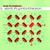 Don't Fly IntoThe Sun
