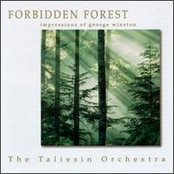 Forbidden Forest: Impressions of George Winston