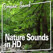 Nature Sounds in HD (Nature Sound)