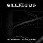 Black Desolate Winter / Depressive Hibernation
