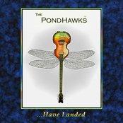 The PondHawks Have Landed