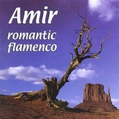 Romantic Flamenco