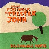 Reasonable Horse