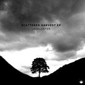 Scattered Harvest EP