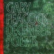 December Poems