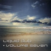 Liquid Dub, Volume Seven