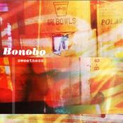 album Sweetness by Bonobo