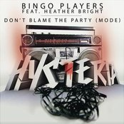 Don't Blame The Party (Mode) (feat. Heather Bright)