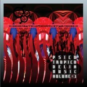 Psicotropicodelia Music Vol. 3.1: Psicotropic (PTDM006, 2008)