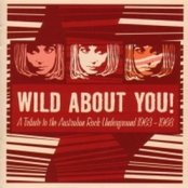 Wild About You! Tales From the Australian Rock Undergound 1963-1968