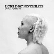 Lions That Never Sleep