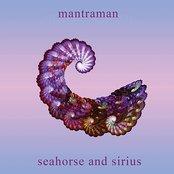 Seahorse and Sirius