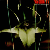 album Dreams Less Sweet by Psychic TV