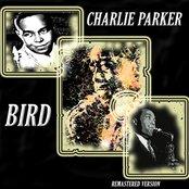 Bird (Remastered Version)
