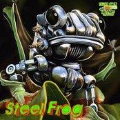 Steel Frog Riddim