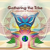 Gathering The Tribe