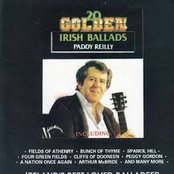 20 Golden Irish Ballads