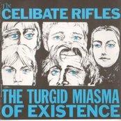 The Turgid Miasma of Existence