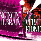 Velvet kidneys