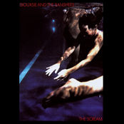 album The Scream by Siouxsie and the Banshees