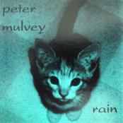 album Rain by Peter Mulvey