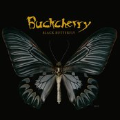 Black Butterfly (Edited)