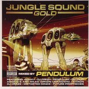 JUNGLE SOUND GOLD (Disc 2)