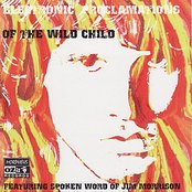Electronic Proclomations Of The Wild Child