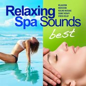 Best of Relaxing Spa Sounds (50 Gentle Instrumental Tracks and Pure Nature Sounds for Relaxation, Meditation, Healing Massage, Sound Therapy, Stress Relief, Good Sleep)