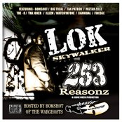 Lok Skywalker - 253 Reasonz