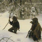 Geister im Waldgebirg