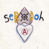album Defend Yourself by Sebadoh
