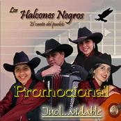 Musica de LOS HALCONES NEGROS