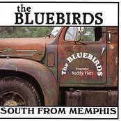 South from Memphis