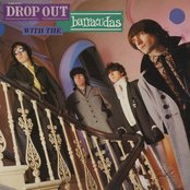 Drop Out With The Barracudas