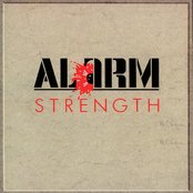 Strength [1985-1986] Remastered