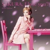 SAKURA, I love you?