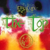 The Top (Remastered)