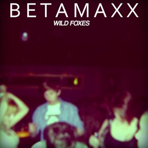 Image for 'Wild Foxes'