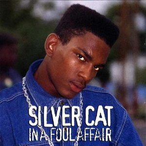 Image for 'Silver Cat'