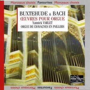 Image for 'O lamm Gottes, unschuldig, BWV656'