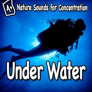Imagem de 'Nature Sounds for Concentration – Under Water'