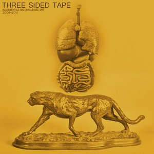 Image for 'Three Sided Tape Volume One'