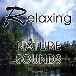 Imagem de 'Relaxing Nature Sounds Vol. 1'