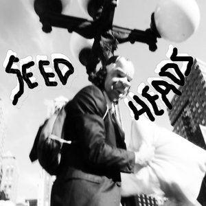 Image for 'SEEDHEADS'